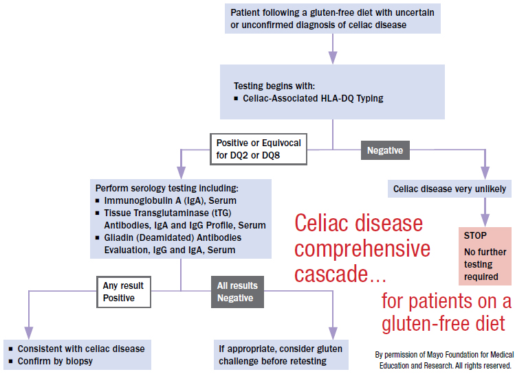Celiac disease comprehensive cascade